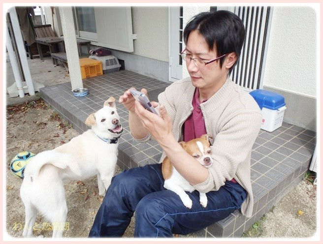 f:id:yasukazu01:20140403194154j:image