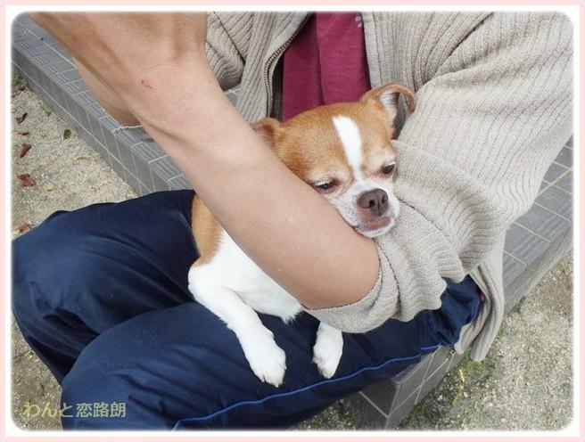 f:id:yasukazu01:20140403194155j:image