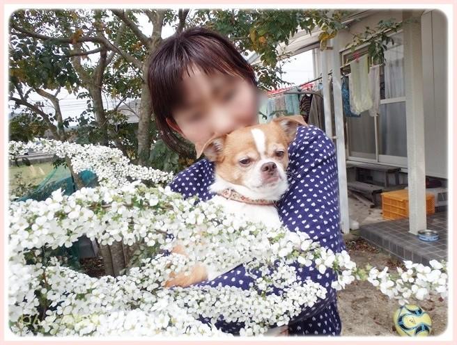 f:id:yasukazu01:20140403195043j:image