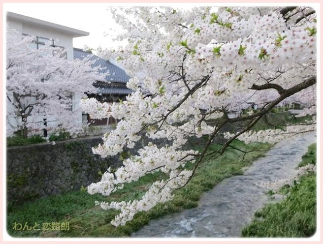 f:id:yasukazu01:20140404203230j:image