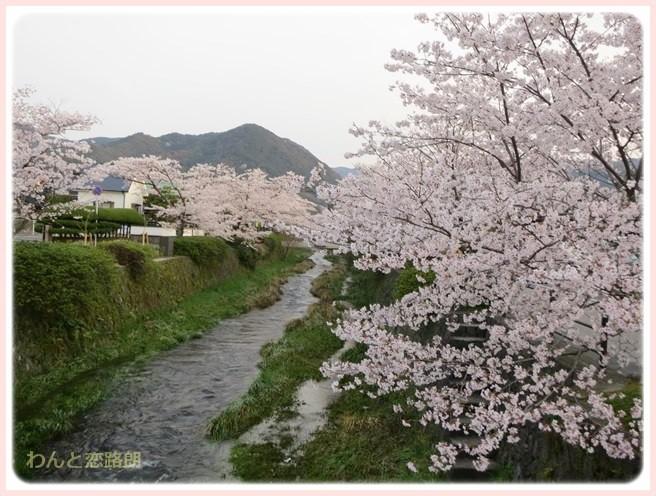 f:id:yasukazu01:20140404203231j:image
