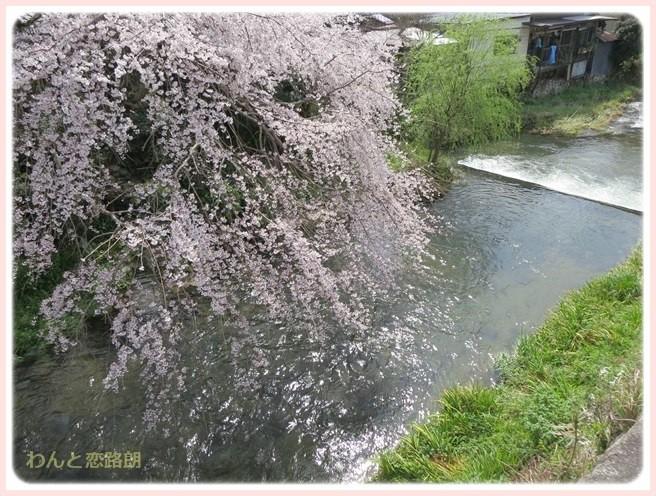 f:id:yasukazu01:20140404203234j:image