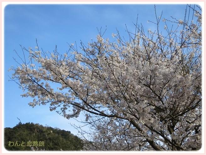 f:id:yasukazu01:20140404205129j:image
