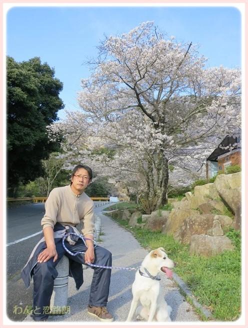 f:id:yasukazu01:20140404205640j:image