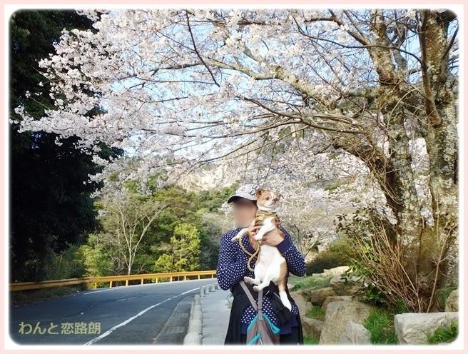 f:id:yasukazu01:20140405215951j:image