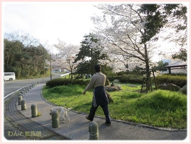 f:id:yasukazu01:20140405215952j:image