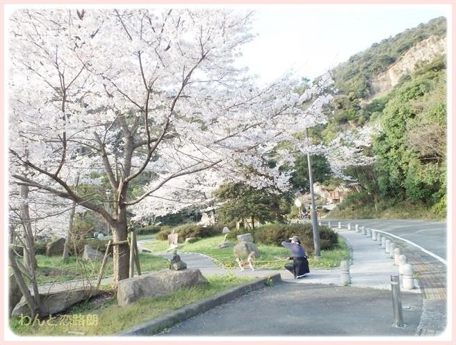 f:id:yasukazu01:20140405215953j:image