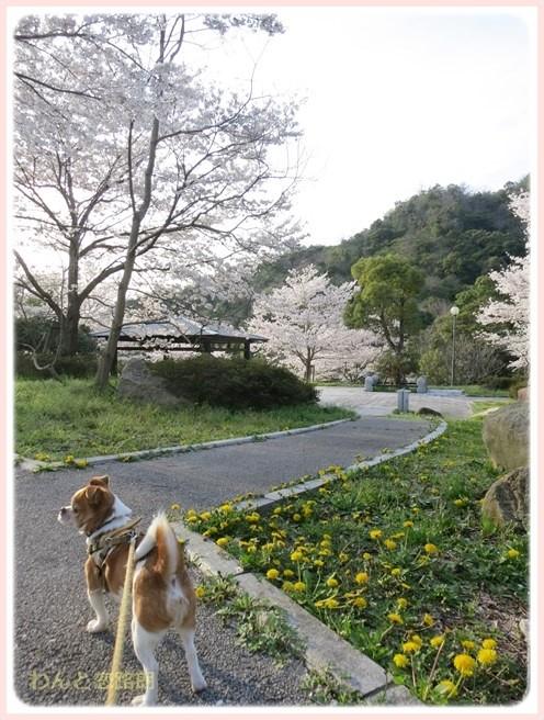f:id:yasukazu01:20140405215954j:image