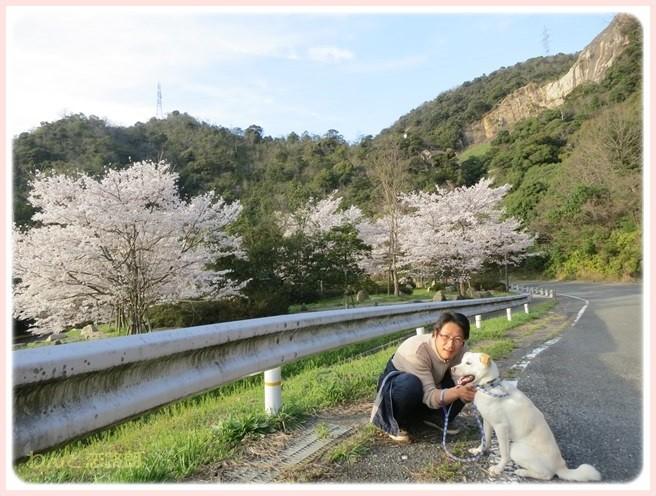 f:id:yasukazu01:20140405215955j:image