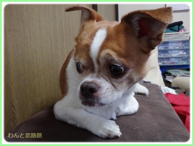 f:id:yasukazu01:20140410213528j:image