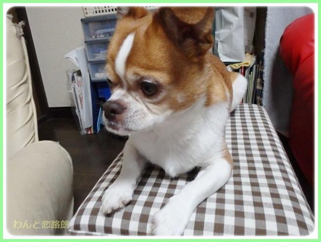 f:id:yasukazu01:20140410214135j:image