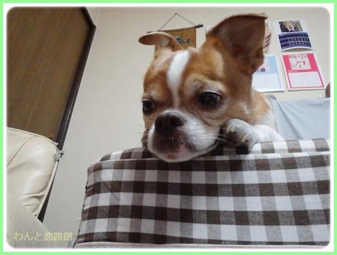 f:id:yasukazu01:20140410214136j:image