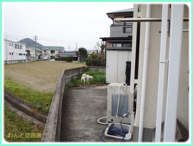 f:id:yasukazu01:20140411195524j:image