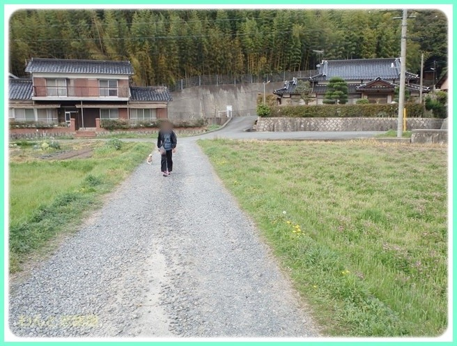 f:id:yasukazu01:20140412202006j:image