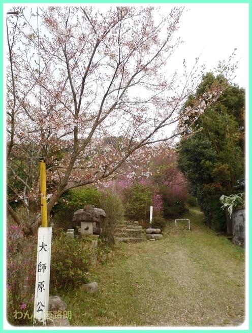 f:id:yasukazu01:20140412202516j:image