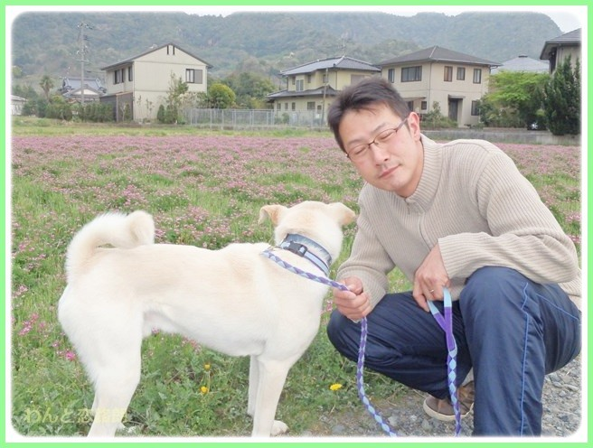 f:id:yasukazu01:20140417213919j:image