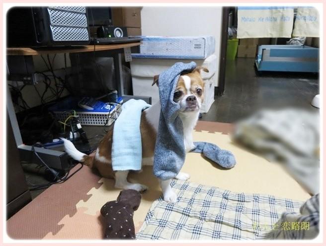 f:id:yasukazu01:20140418205038j:image