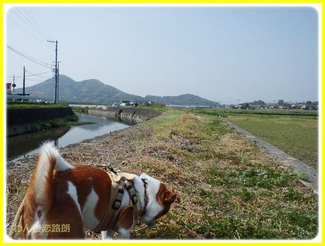 f:id:yasukazu01:20140419184049j:image