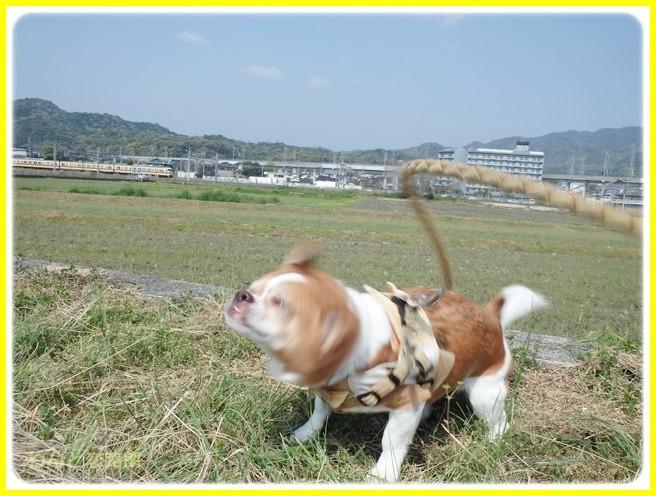 f:id:yasukazu01:20140419184050j:image