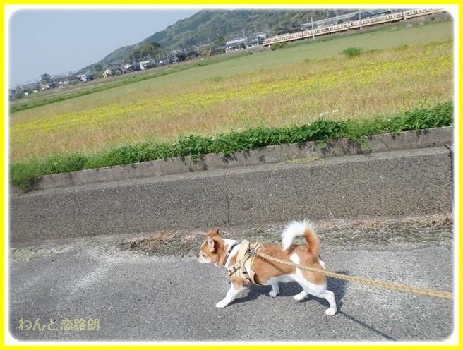 f:id:yasukazu01:20140419184051j:image