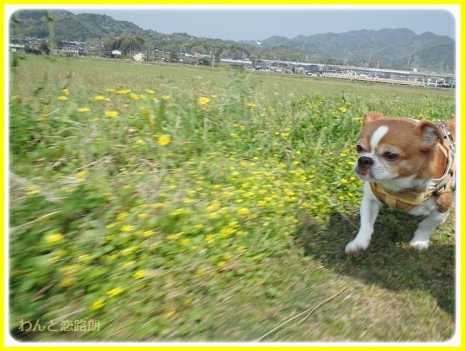 f:id:yasukazu01:20140419184055j:image