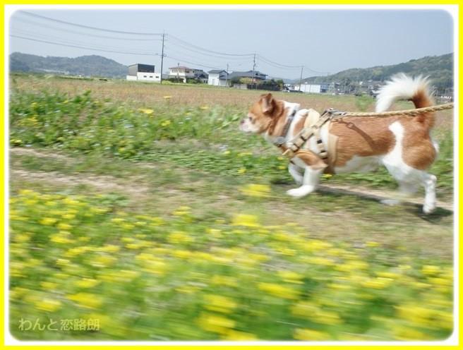 f:id:yasukazu01:20140419184056j:image