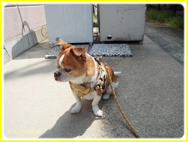 f:id:yasukazu01:20140420211654j:image