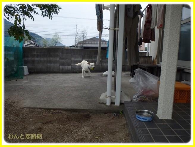 f:id:yasukazu01:20140422203704j:image