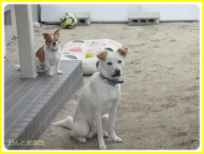 f:id:yasukazu01:20140423102824j:image
