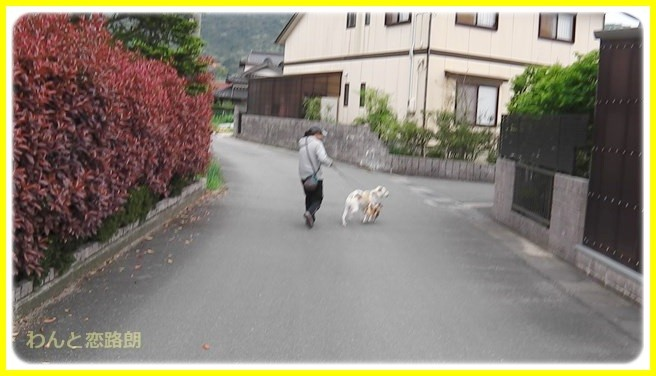 f:id:yasukazu01:20140424215457j:image