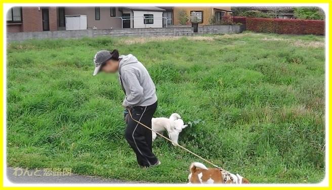 f:id:yasukazu01:20140424215500j:image