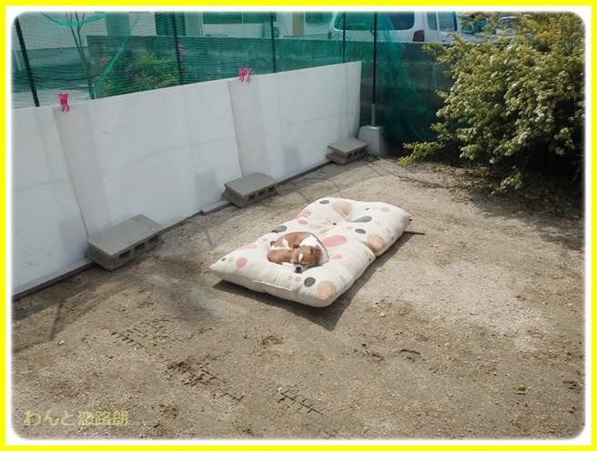 f:id:yasukazu01:20140426211451j:image