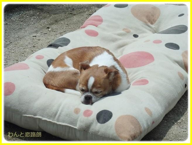 f:id:yasukazu01:20140426211452j:image