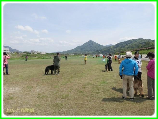 f:id:yasukazu01:20140430210531j:image