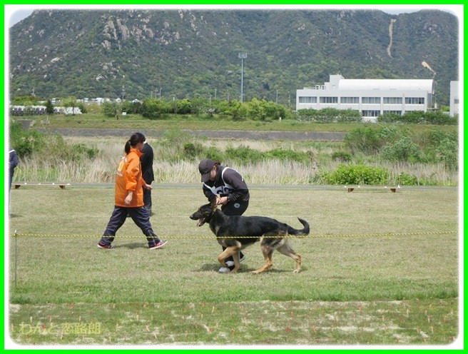 f:id:yasukazu01:20140430211914j:image