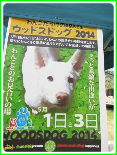 f:id:yasukazu01:20140501215308j:image
