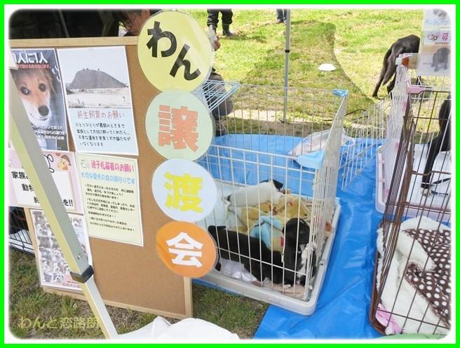 f:id:yasukazu01:20140501215652j:image