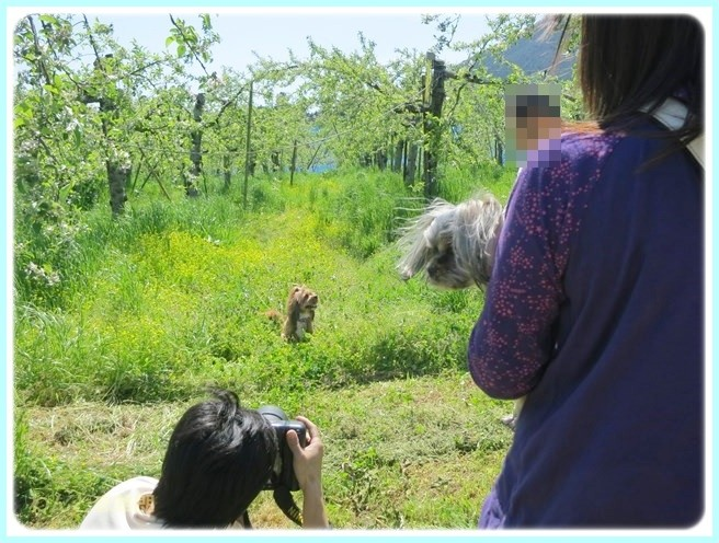 f:id:yasukazu01:20140507211834j:image