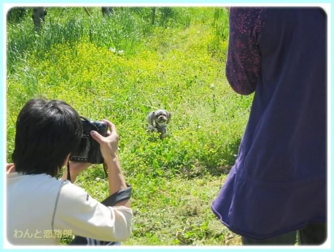 f:id:yasukazu01:20140507211835j:image