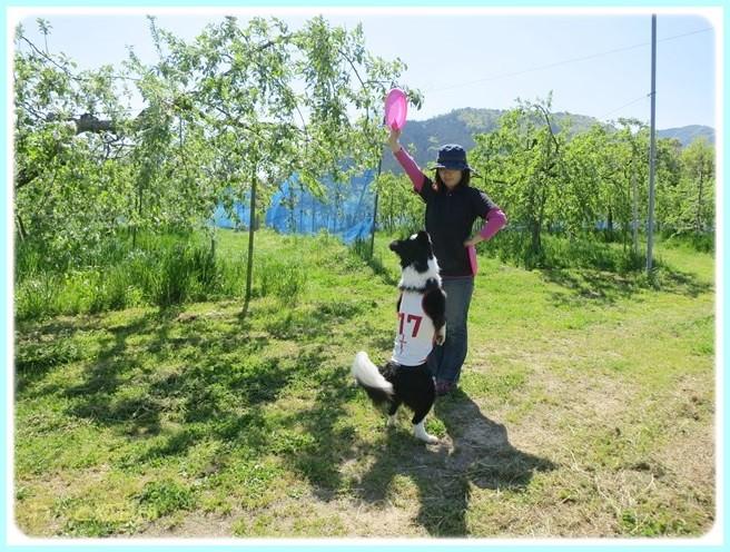 f:id:yasukazu01:20140507211838j:image