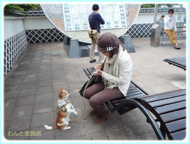 f:id:yasukazu01:20140509221455j:image