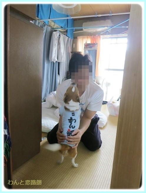 f:id:yasukazu01:20140510194254j:image