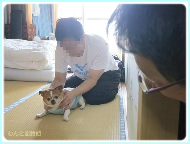 f:id:yasukazu01:20140510194255j:image