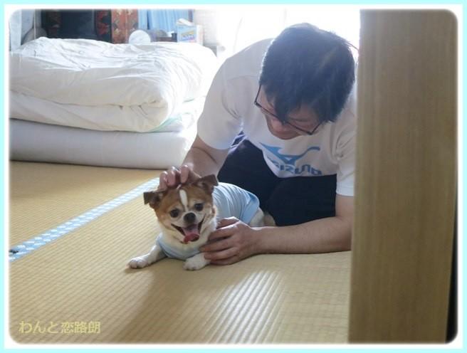 f:id:yasukazu01:20140510194812j:image