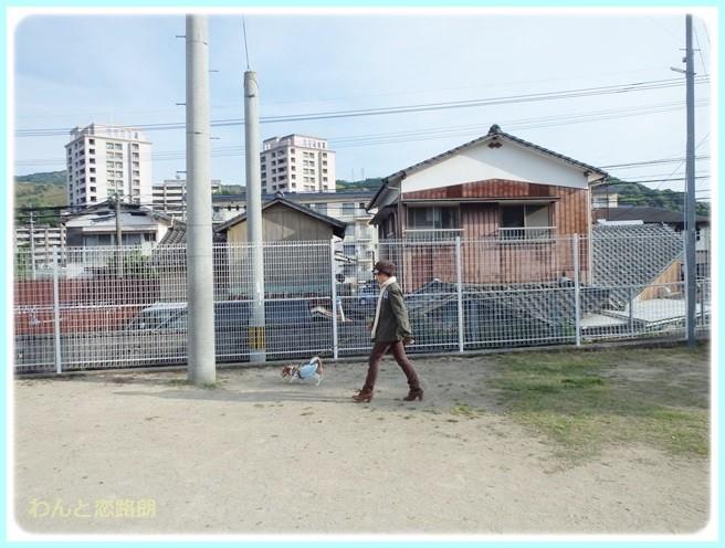 f:id:yasukazu01:20140510195800j:image