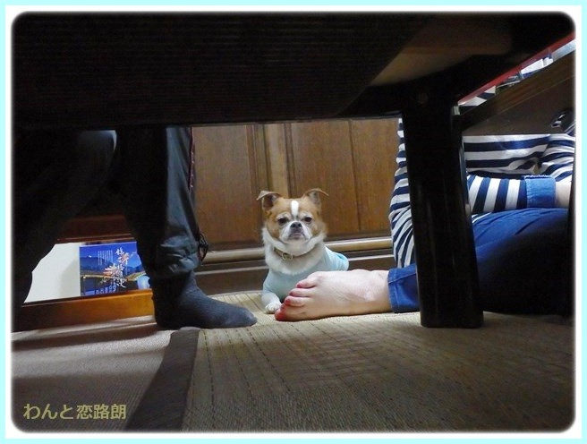 f:id:yasukazu01:20140510201538j:image