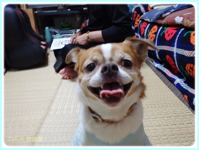f:id:yasukazu01:20140511214221j:image