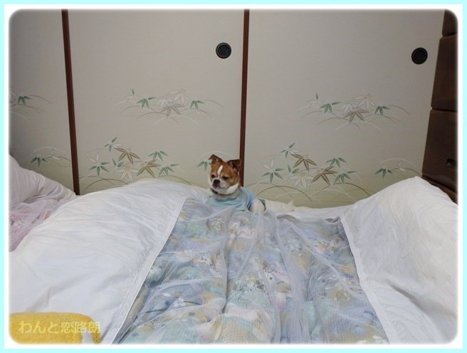 f:id:yasukazu01:20140511214225j:image