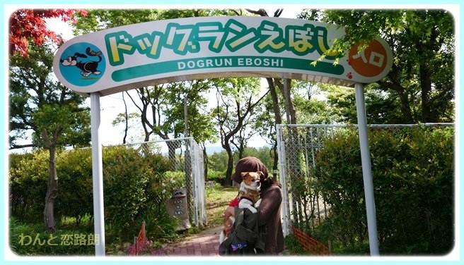 f:id:yasukazu01:20140512223403j:image
