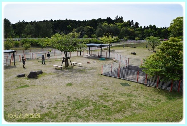 f:id:yasukazu01:20140513200029j:image